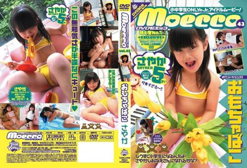 [TASKJ-043] Sayaka - Toybox