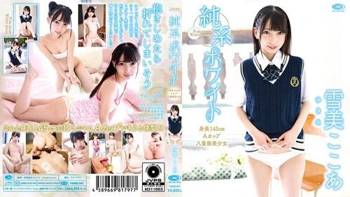 [THNIB-041] Kokoa Yukimi